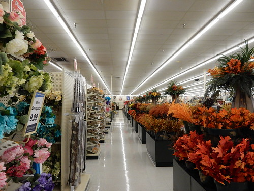 Silk Flowers Hobby Lobby Former Walmart Dodge City Kansas A