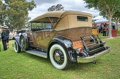 1932 Packard 903 Dual-Cowl Phaeton (dmentd) Tags: 1932 packard phaeton 903 dualcowl