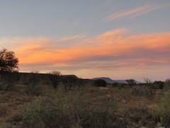 Entering Mountain Zebra National Park after Close (benyeuda) Tags: mountainzebra mountainzebranationalpark nationalpark southafrica africa