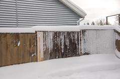 Fence Snow (Richtpt (Rich Uchytil)) Tags: 2017 oregon pdx portlandor fence snow winter portland unitedstates us
