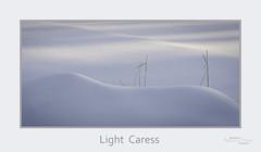 Light Caress (baldwinm16) Tags: december il illinois cold freezing frigid nature season snow snowylandscape snowyscene winter natureofthingsphotography omot