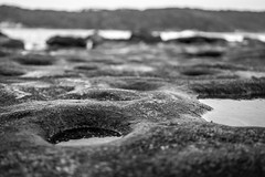 La Perouse (Manny Esguerra) Tags: bw outdoors beach