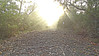 Mist (Tony Markham) Tags: 10rfiretrail 10r dharawalnationalpark dharawal 10b 10bfiretrail xmas xmasday christmasday christmas sunrise