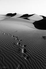 Iran - maranjab #desert (mehryarhr1) Tags: naturalgeography natural public composition winter 2016 blackwhite blackandwhite sanddune outdoor iran 18135 creative monochrome bw trip travel natrue 70d canon desert