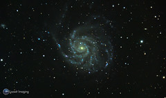 Messier 101 - The Pinwheel Galaxy (Loowit Imaging - Steve Rosenow, Photographer) Tags: space science astronomy astrophotography deepsky deepspace meade meadelx200 nikon nikond5500 galaxy m101 messier101 thepinwheelgalaxy astrometrydotnet:id=nova1901429 astrometrydotnet:status=solved