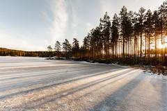 20170113099698 (koppomcolors) Tags: koppomcolors winter vinter värmland varmland håltebyn sweden sverige scandinavia