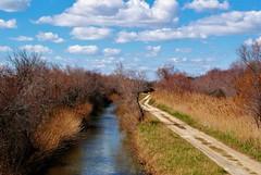 Parallelismi (• Sara •) Tags: arles france francia provenza provence landscape sky clouds river park nature riserva naturale