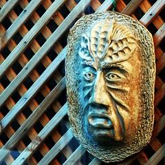 Garden guardian... (tina negus) Tags: garden gusrdian greenman ceramic treenose pottery stoneware fence trellis