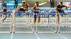 DSC_7427 (Adrian Royle) Tags: sheffield eis sport athletics track field action competition racing running sprinting jumping throwing britishathletics nikon indoor indoorathletics ukindoorathletics 2017