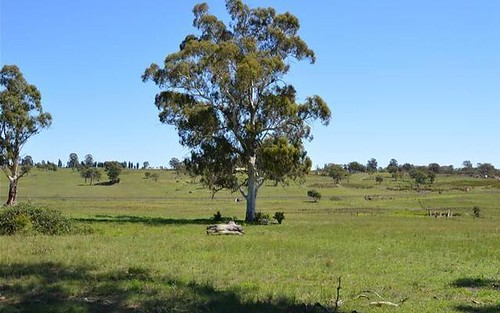 Lot 2 84 Glen Alice Road, Rylstone NSW 2849