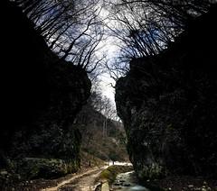 Dimholt (simone_aramini) Tags: longexposures nikond200 naturallight nikon nationalgeografic ngc nature natura italianlandscapes italy ilbelpaese inalto mountain montagna lucinaturali landscape landscapes paesaggi paesaggio