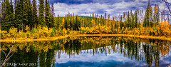 Dirty Little Industrial Pond (mdrew70) Tags: autumn trees sky canada david mountains clouds landscape photography pond may drew alberta nordegg eastern thompson refection slopes