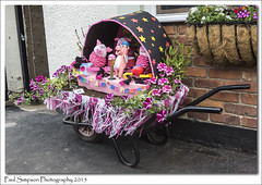 Percy & The Piglets (Paul Simpson Photography) Tags: flowers festival bacon decoration lincolnshire pigs wheelbarrow northlincolnshire photosof imageof photoof barrowuponhumber imagesof sonya77 paulsimpsonphotography june2015 barrowfest