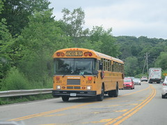 Brewster CSD #230 (ThoseGuys119) Tags: schoolbus icce icre brewsterny icfe bluebirdallamerican leonardbussales brewstercsd