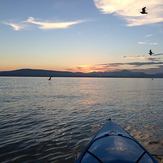 Mt. Lassen and seagulls from Lake Almanor