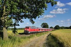 P2020453 (Lumixfan68) Tags: eisenbahn db bahn deutsche regio 218 züge loks baureihe dieselloks