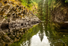 untitled-1 (Photos by Wesley Edward Clark) Tags: reflection oregon silverton waterfalls scottsmills abiquacreek abiquafalls