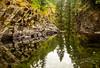 untitled-1 (Photos by Wesley Edward Clark) Tags: reflection oregon silverton waterfalls scottsmills abiquacreek abiquafalls