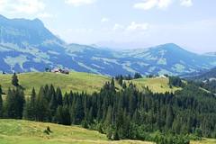 Alp Imbrig Marbach: Blick Richtung Oberhabchegg (Martinus VI) Tags: schweiz switzerland suisse suiza luzern svizzera alp emmental marbach kanton entlebuch bumbach schangnau imbrig