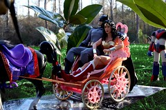 Paprihaven 0783 (MayorPaprika) Tags: horse castle set toy dc carriage barbie prince story diana wonderwoman batman 16 custom diorama direct brucewayne grandizer medicom shogunwarrior raydeen canoneos50d jumbomachineder