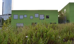 Green school #1 (TheManWhoPlantedTrees) Tags: school arquitetura architecture porto greenery portuguesearchitecture nikond3100 avaarchitects tmwpt
