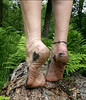 Tiptoe walk (Barefoot Adventurer) Tags: barefoot barefooting barefooter barefoothiking barefeet barefooted baresoles barfuss naturalsoles naturallytough nature connected strongfeet anklet arches barefootwalking healthyfeet hardsoles earthsoles earthing earthstainedsoles balance strongarch hiking happyfeet woodlandsoles woodland tiptoe ankles stretching flexiblefeet livingleather leathersoles leathertoughsoles instep forestsoles forestwalk wrinkledsoles