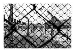 AUSCHWITZ  I  (Polonia) (RAMUBA) Tags: auschwitz polonia wire bw campo de concentracion holocausto