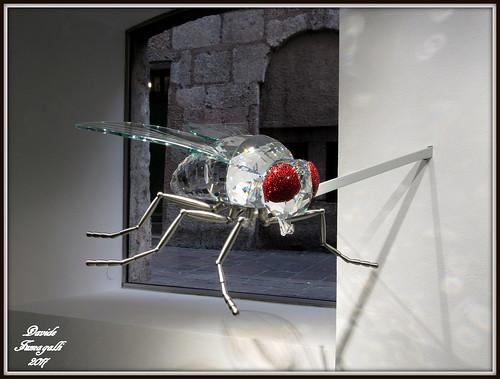 Swarowski fly