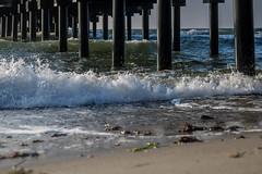 Dock (Infomastern) Tags: dalabadet brygga dock hav sea östersjön