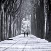 L'hiver est en chemin (_ Adèle _) Tags: bruxelles belgique parc elisabeth allées neige passants deux marche maisons arbres troncs hiver nb noiretblanc bw blackandwhite monochrome rue street extérieur ambiance mood contedefées