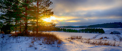 Winter light (Joni Mansikka) Tags: nature winter light outdoor snowy landscape view sunlight trees silhouettes sky clouds paimio suomi finland green sel16f28