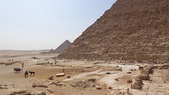 The Pyramids of Giza (Rckr88) Tags: giza cairo egypt the pyramids thepyramidsofgiza pyramidsanddesert pyramid africa travel travelling ancient ancientegypt relic relics