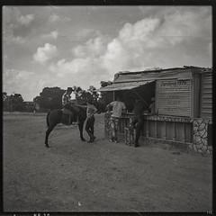 Urban Cowboy (*altglas*) Tags: mediumformat mittelformat 6x6 120 film analog expired expiredfilm orwonp20 bw monochrome zeiss superikonta 53316 cuba guardalavaca streetlife horse cowboy cafeteria
