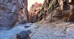 Closed Canyon (BongoInc) Tags: bigbendranchstatepark westtexas chihuahuandesert closedcanyon