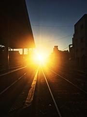 Cuando el día se te viene encima como un tren (Nicolas Solop) Tags: train railroad sunrise amanacer ferrocarril tren road sol sun ferroviario
