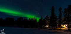 Dream & Do (BeNowMeHere) Tags: ifttt 500px travel auroraborealis dreamdo finland landscape lapland nature northernlights space color forest nightscape
