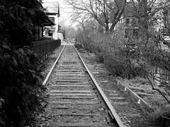 Old tracks, going nowhere (pilechko) Tags: tracks rail blackandwhite monochrome lambertville nj vanishingpoint