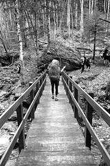 . (Fra Lorè) Tags: route comunità community camminare walk walking natura nature friend friends noel natale weather beautiful wonderfull sun mountain romagna scout agesci clan