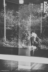 Dans le vent... (MagneticDust) Tags: street city blackandwhite bw woman paris france reflection art window vent photography photo blackwhite alone photographie wind noiretblanc sony streetphotography nb rue blackandwhitephotography magneticdust nex6 magneticdustphotography sonynex6