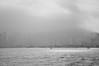 Victoria peak hidden (katushau) Tags: morning blackandwhite bw hk monochrome hongkong mono bay early asia harbour dusk victoria east waters victoriaharbour