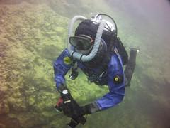 Double hose scuba diver in drysuit. (Vintage Scuba) Tags: ocean lake man men wet water vintage belt tank mask smooth dry scuba diving rubber double hose suit diver beavertail weight drysuit fins wetsuit rebreather regulator