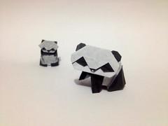 Pandas Yoshizawa (aronnypivaral) Tags: art paper origami panda arte guatemala papel papiroflexia pandas xela quetzaltenango monterroso pivaral aronny