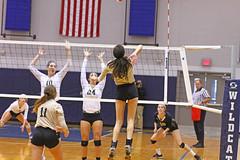 IMG_8127 (SJH Foto) Tags: girls volleyball high school york delone catholic team teen teenager net battle spike block action shot jump midair