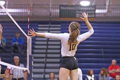 IMG_8312 (SJH Foto) Tags: girls volleyball high school york delone catholic team teen teenager jump spike burst mode