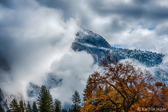 Yosemite Valley - Cook's Meadow Autumn Snow (www.karltonhuberphotography.com) Tags: yosemiteconnect 2015 adventure autumn change clearingstorm clouds cold contrast cooksmeadow drama elmtree exploration fallcolors freshsnow halfdome karltonhuber light lowclouds mountain naturalworld nature snow transformation transition trees weather yosemite yosemitenationalpark yosemitevalley