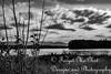 IMG_8514-2 (Forget_me_not49) Tags: alaska alaskan wasilla lakes lucillelake boardwalk pier sunrise waterways