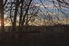 (NebulaBlood) Tags: mercer slough mercerslough nature naturepark park sunset