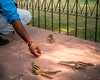 Agra - Agra Fort-2591 (tosakan2000) Tags: asien indien urlaub chipmunk india asia