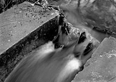 debris-n-flowmono (321dustymix) Tags: bothal riverwansbeck steppingstones longexposure timed blur watertrails monochrome mono blackwhite stones