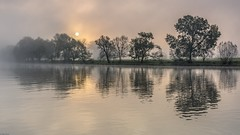 *Mystical Sunrise at River Moselle* (albert.wirtz) Tags: albertwirtz water reflections spiegelung sunrise sonnenaufgang niebla nebbia brume nebel fog mist mosel moseltal moselwasser ehrang trierquint quint schweich radweg moselradweg moselufer herbst fall autumn gegenlicht backlight mysticalsunrise germany deutschland rheinlandpfalz rhinelandpalatinate nikon d810 stativ tripod